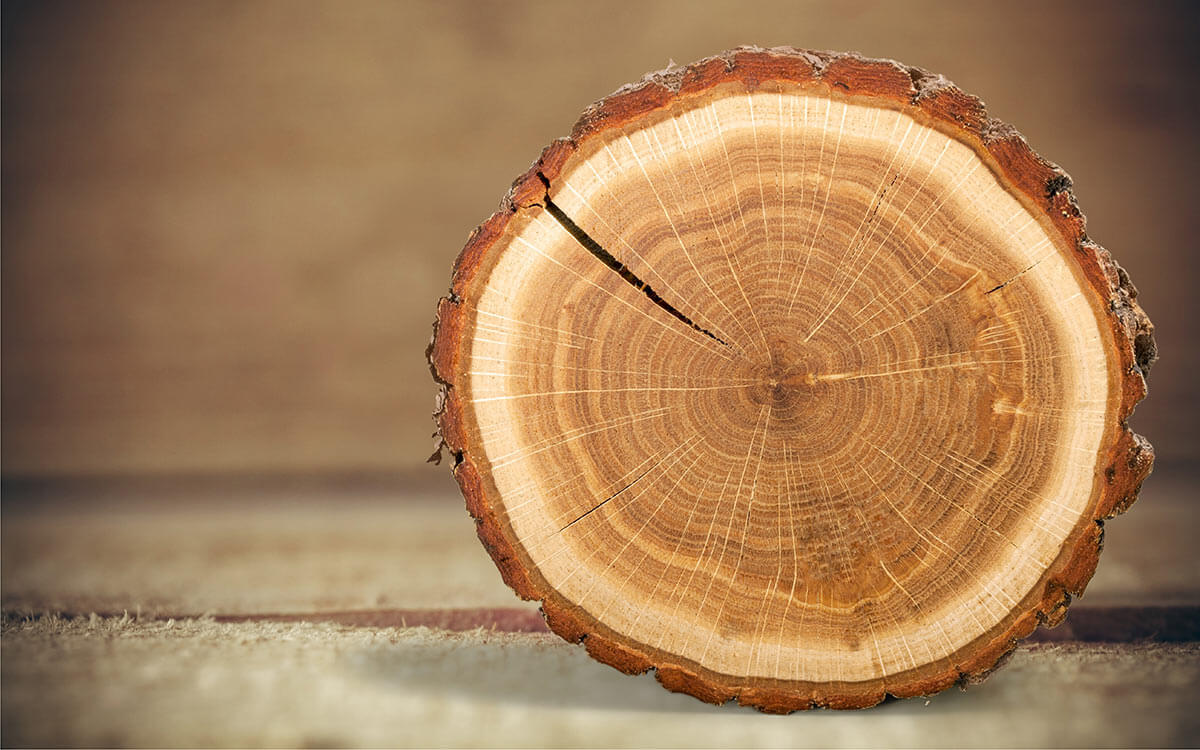 How do you measure roundwood?