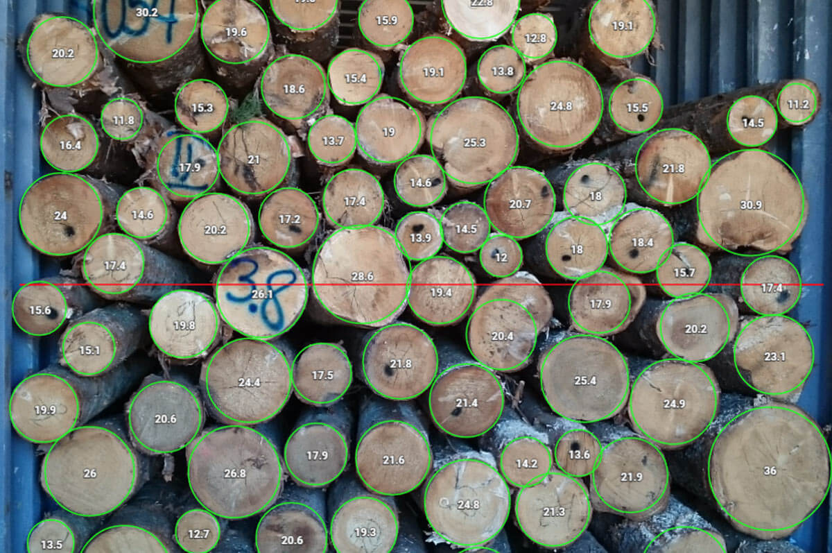 How to Measure Timber with Timbeter's Container Version