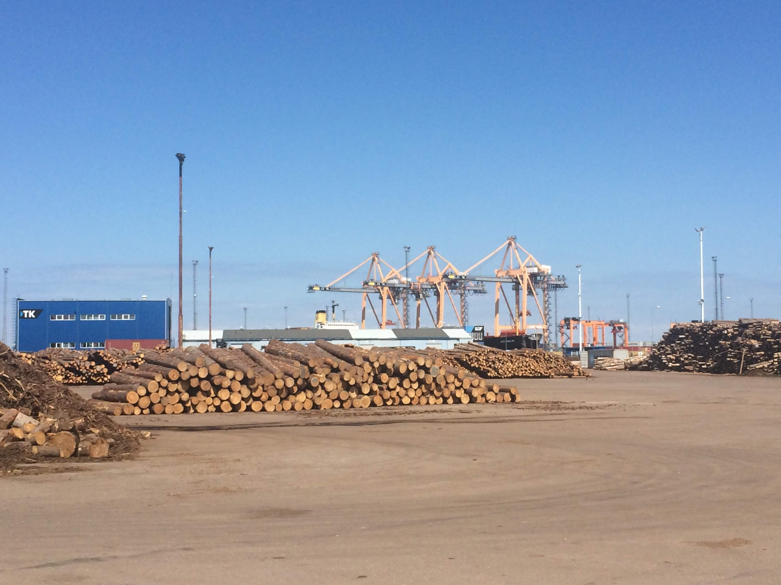Timbeter launches new application for log counting and volume estimation of timber in containers