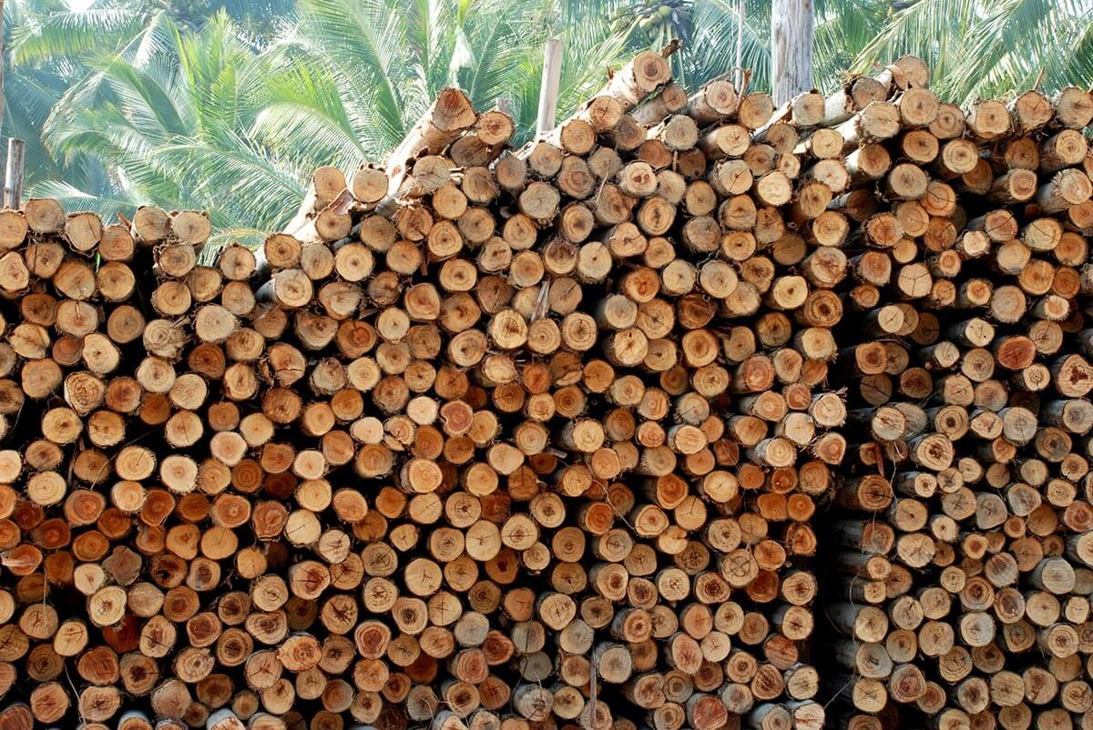 Pulpwood & Fuelwood Manufacturers - Timbeter