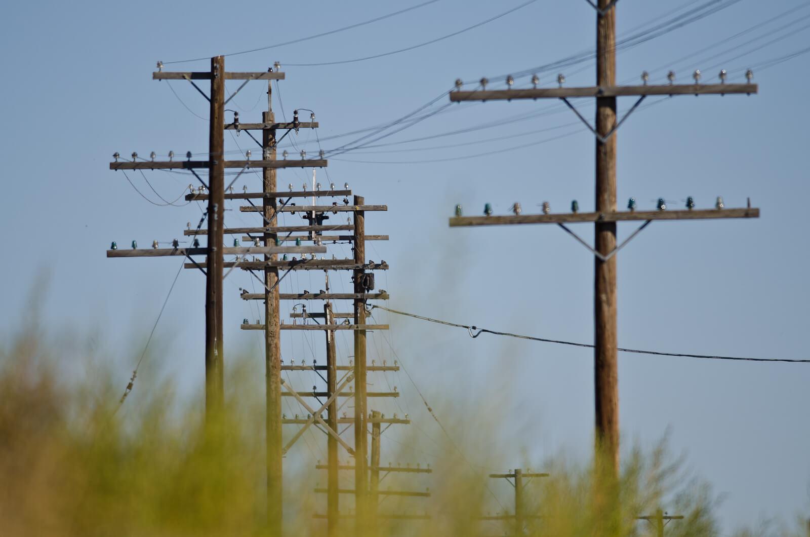 Wood Poles Companies