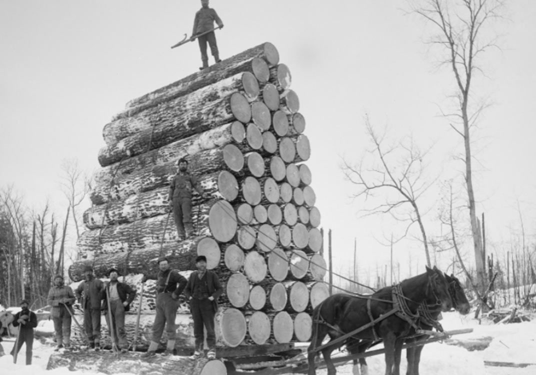5-Reasons-Why-You-Shouldnt-Measure-Timber-Via-Weight