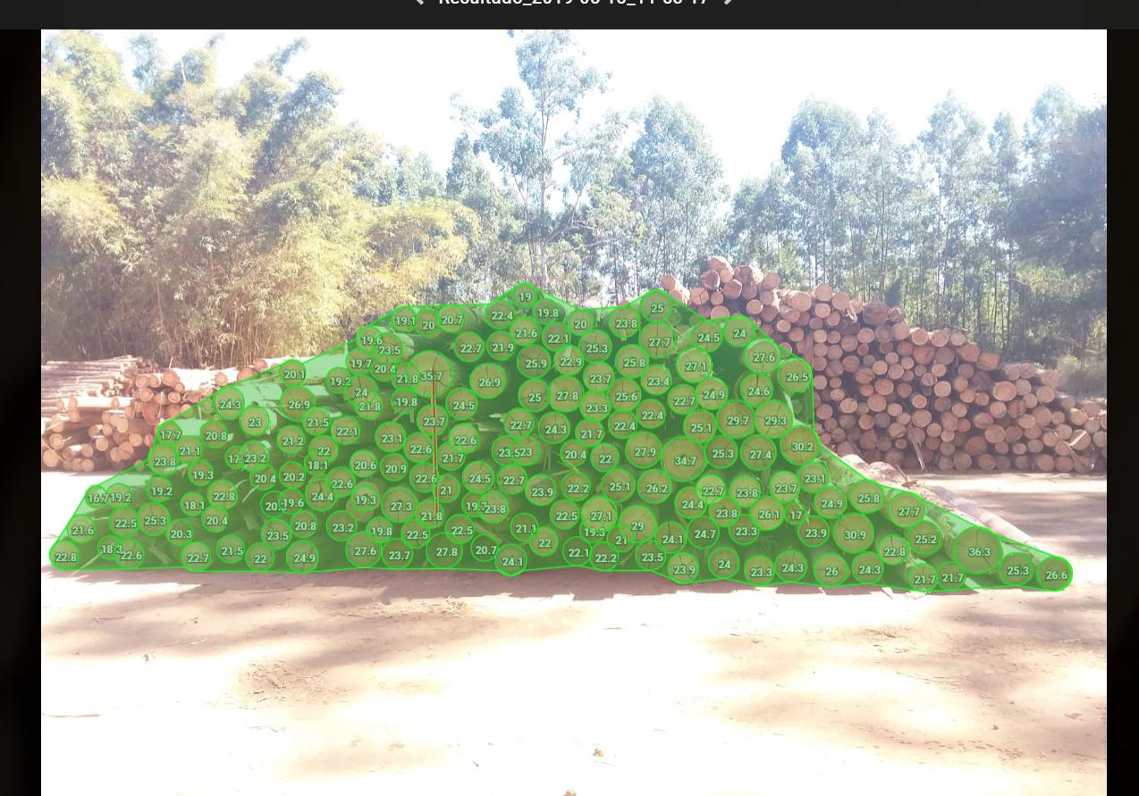 Screenshot from Timbeter App