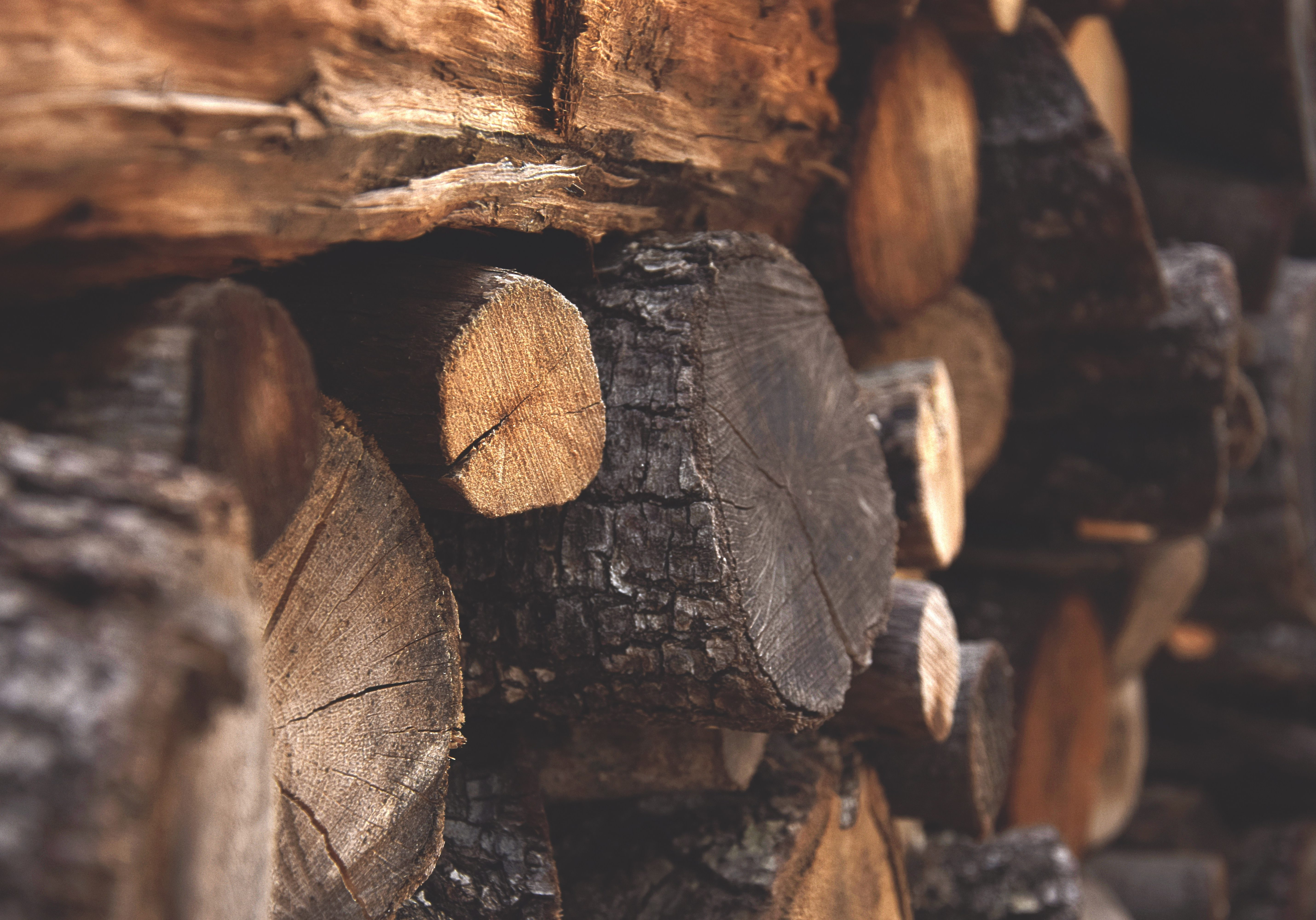 bark-chopped-wood-dark-122588