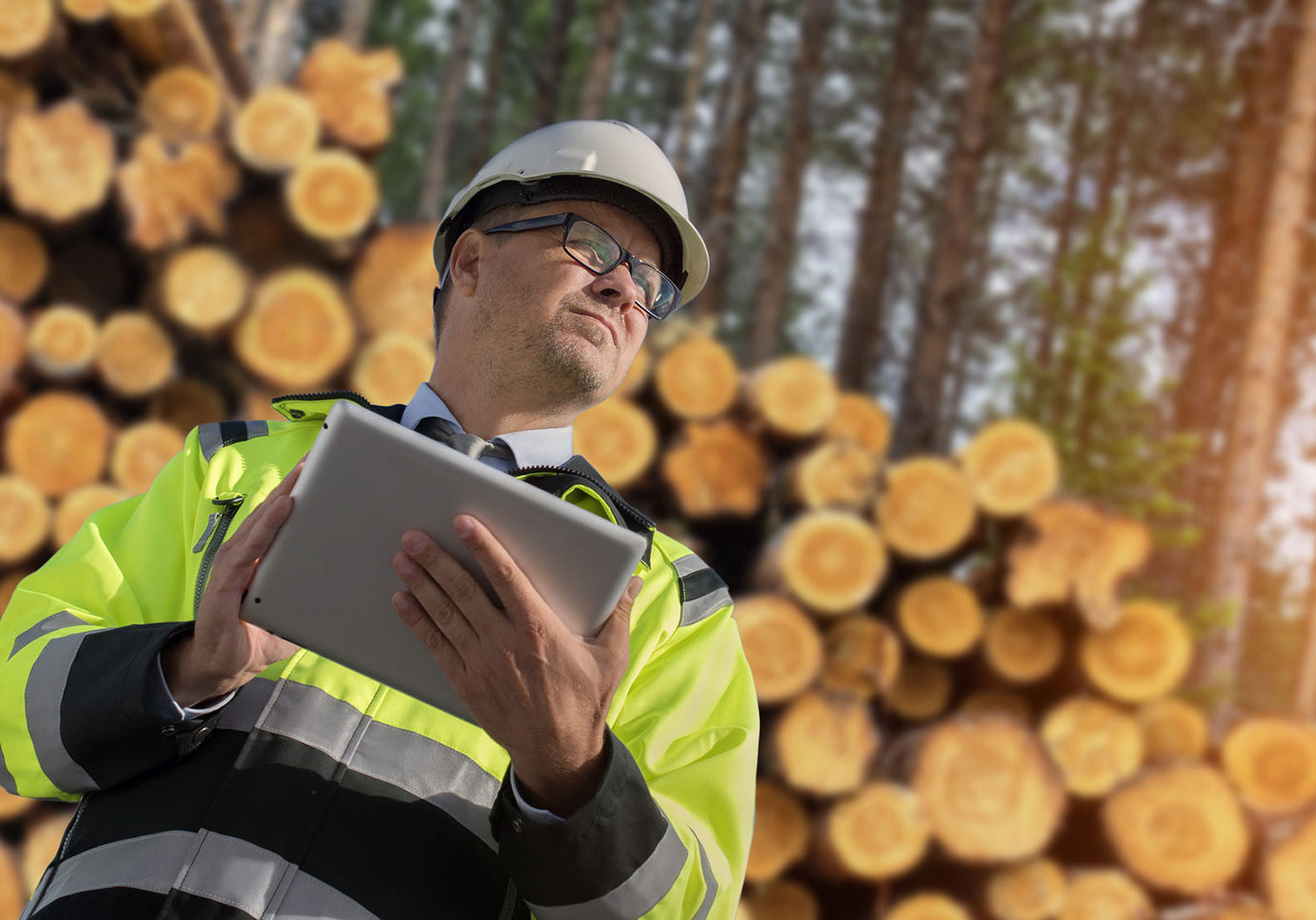 bigstock-Forestry-worker-with-digital-t-206257747
