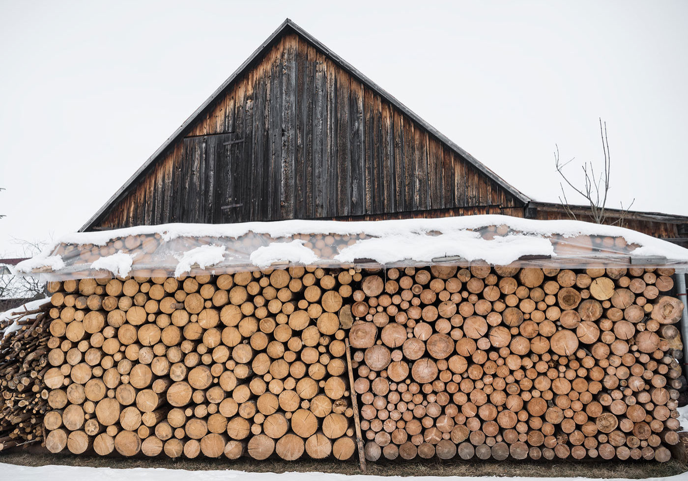 bigstock-Pile-Of-Wood-Logs-Ready-For-Wi-226564582