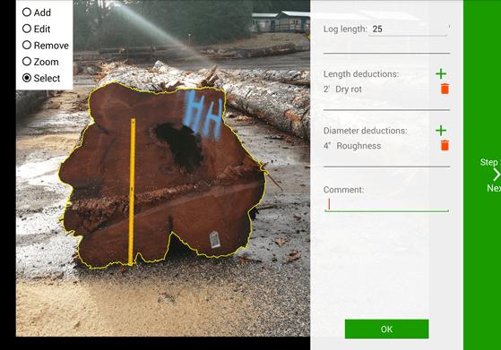 Single High-Value Log