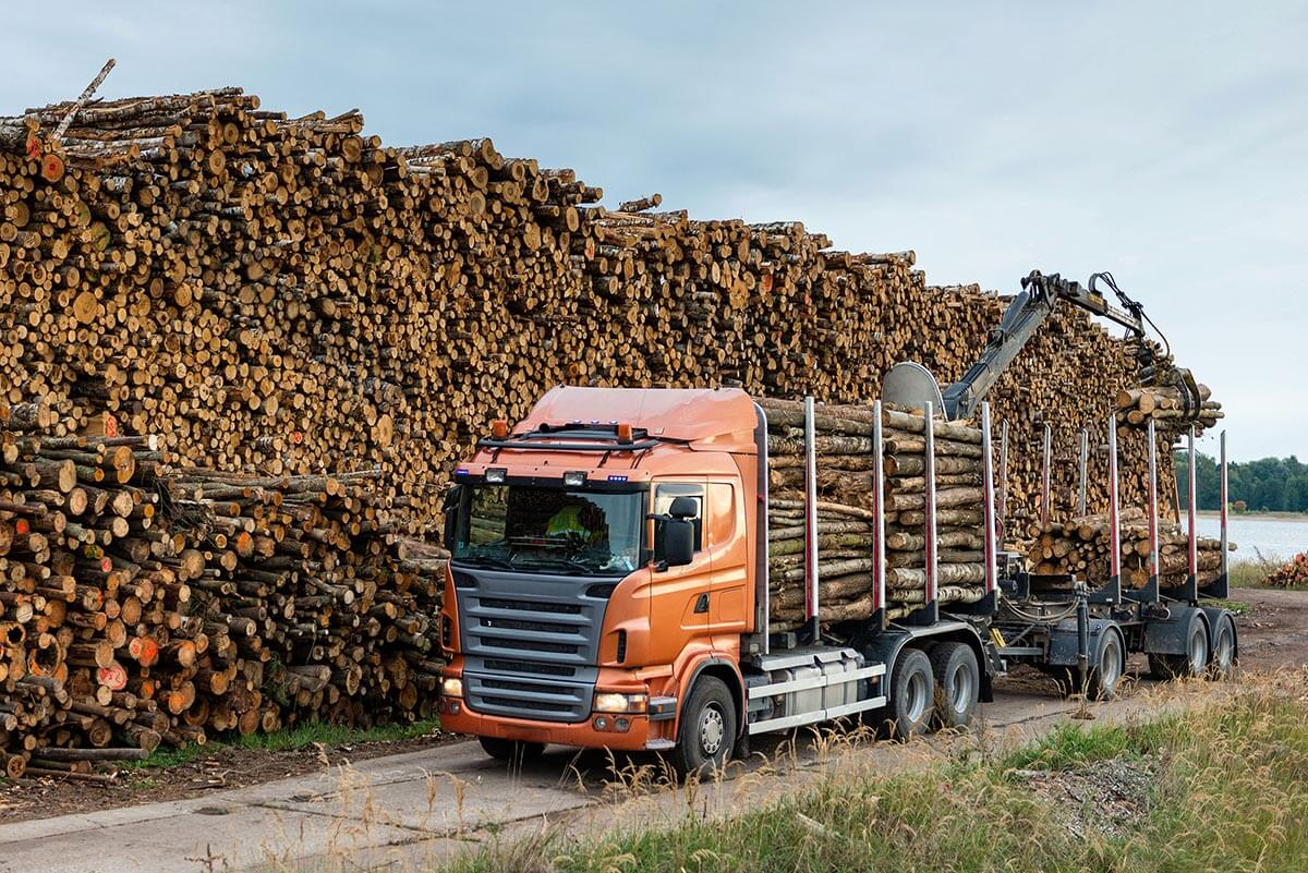 Timber Trucks & Transportation Companies - Timbeter