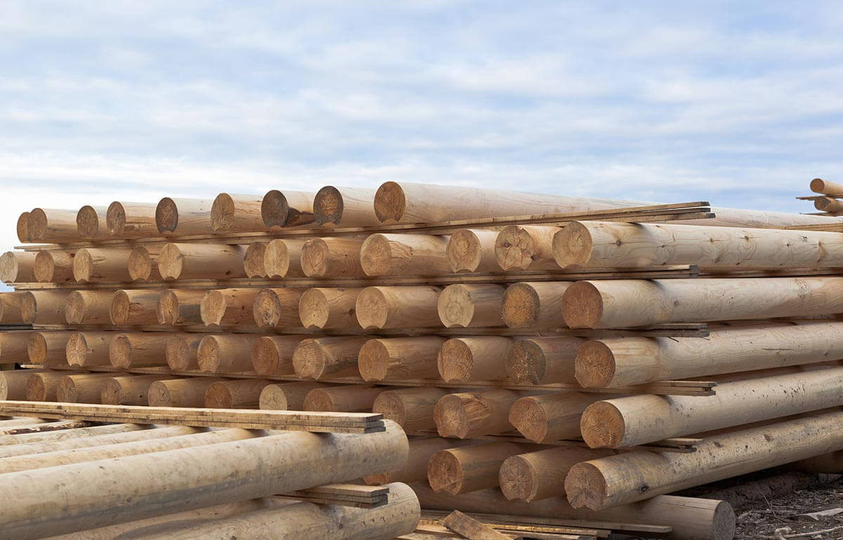 Wood Poles Companies - Timbeter