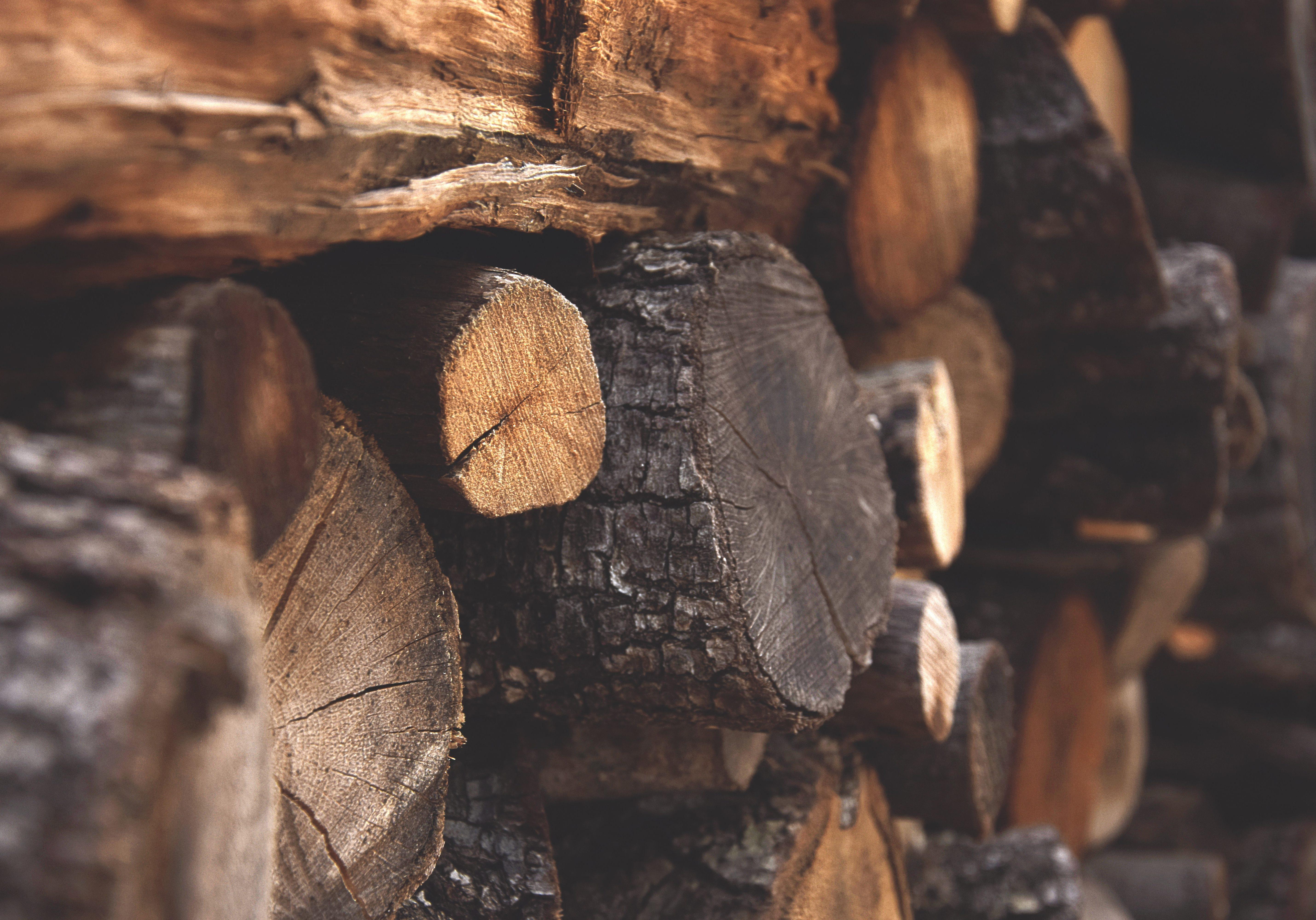 bark-chopped-wood-dark-122588