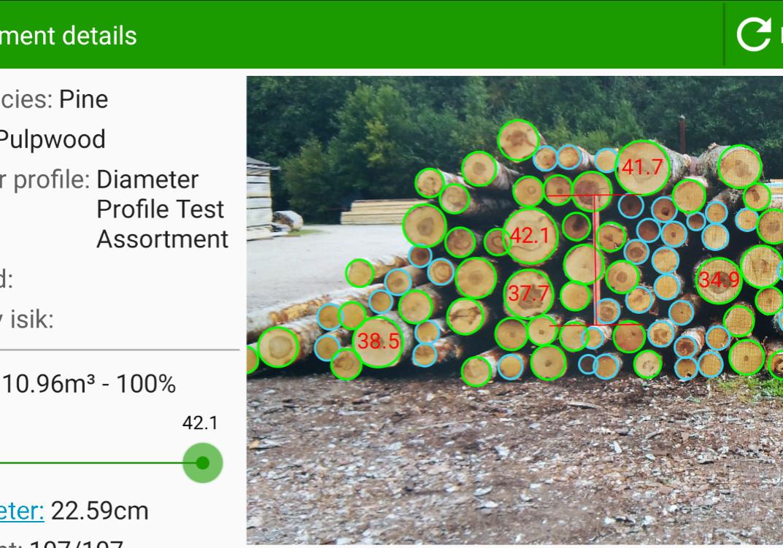 pile measurement-2